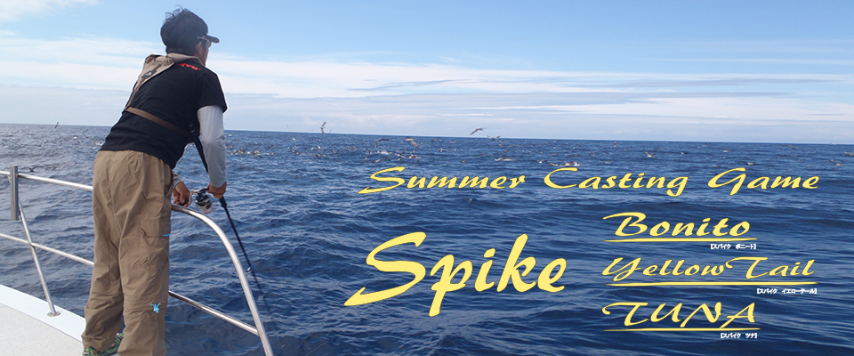 Summer casting game 「Spike Bonito/Yellow Tail/ Tuna」